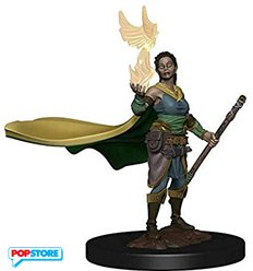 Dungeons & Dragons Icons of the Realms - Elf Druid