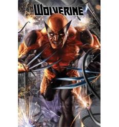 Wolverine 296 VAR L